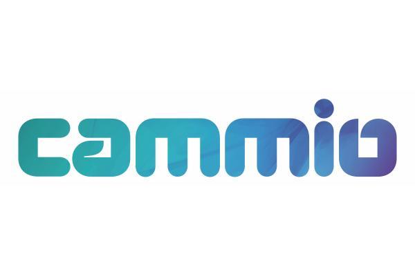Cubiks seamless integration partner Cammio Logo